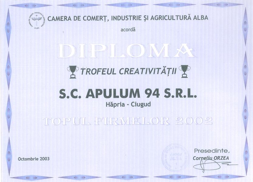 Anul 2002 Diploma