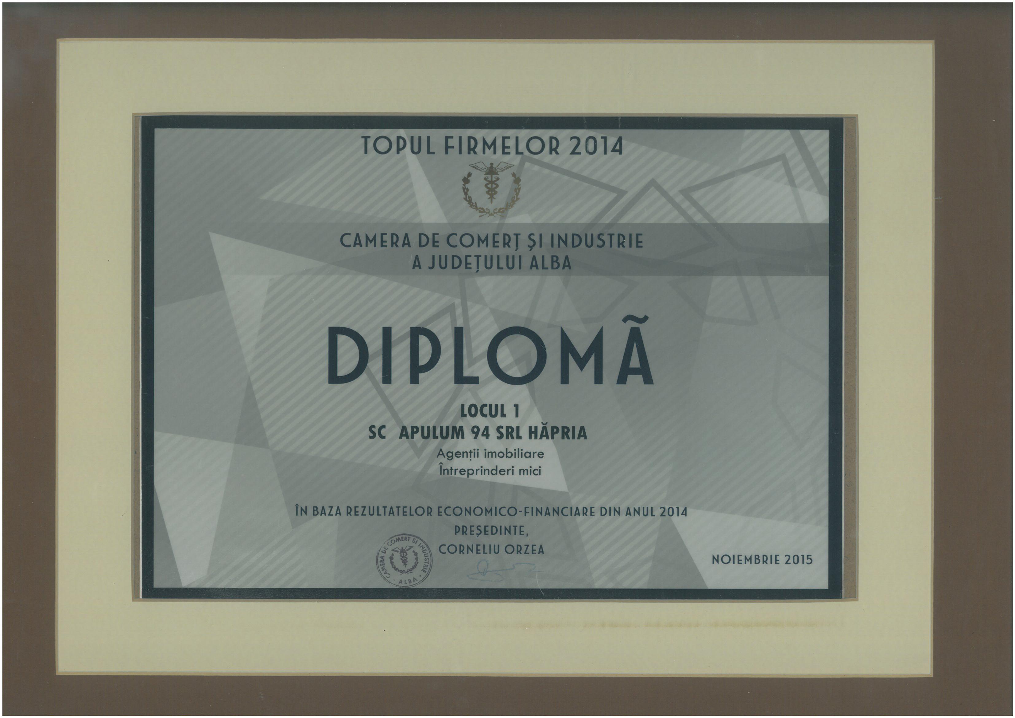 Topul Firmelor - 2014 - Locul 1