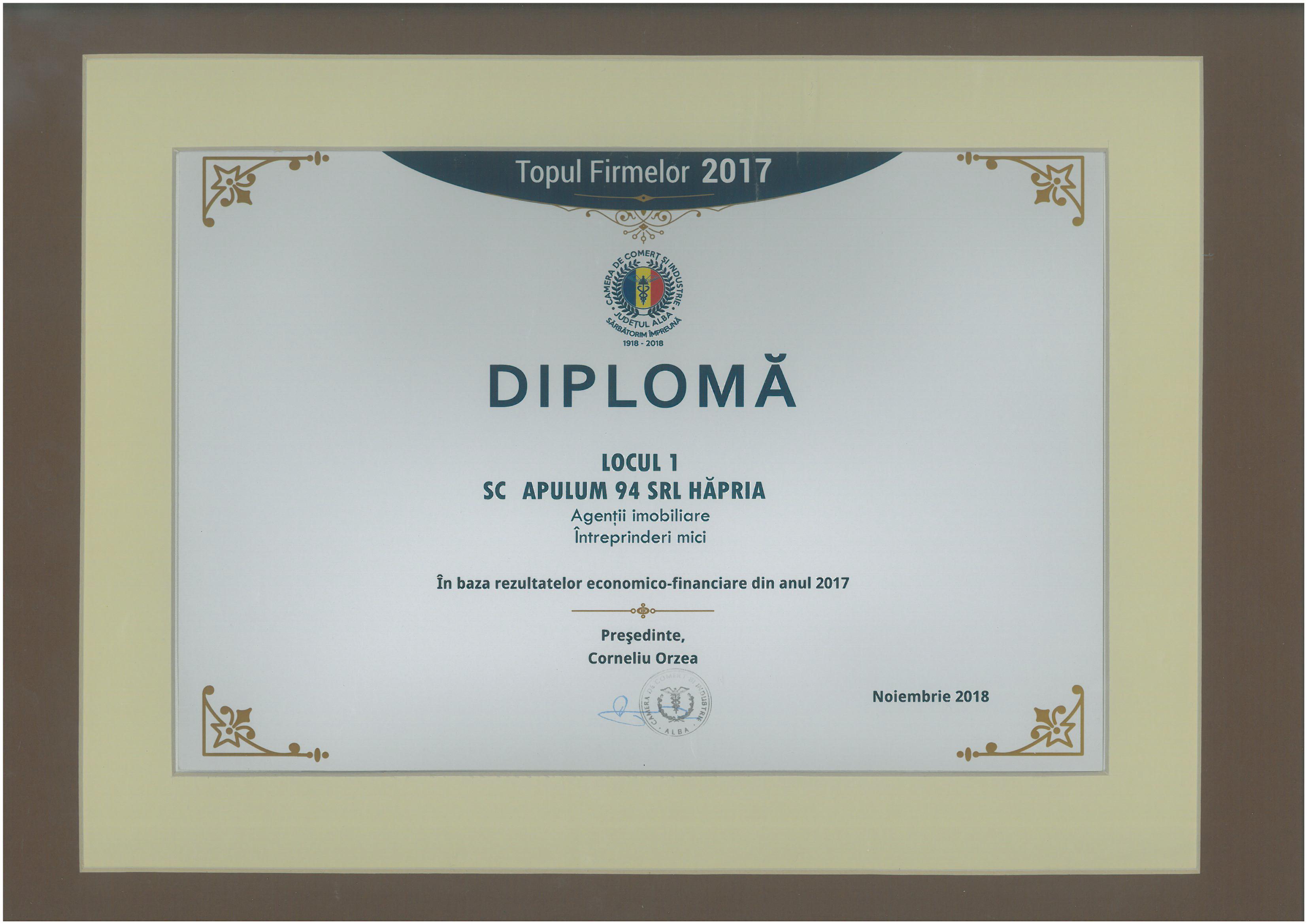 Topul Firmelor - 2017 - Locul 1