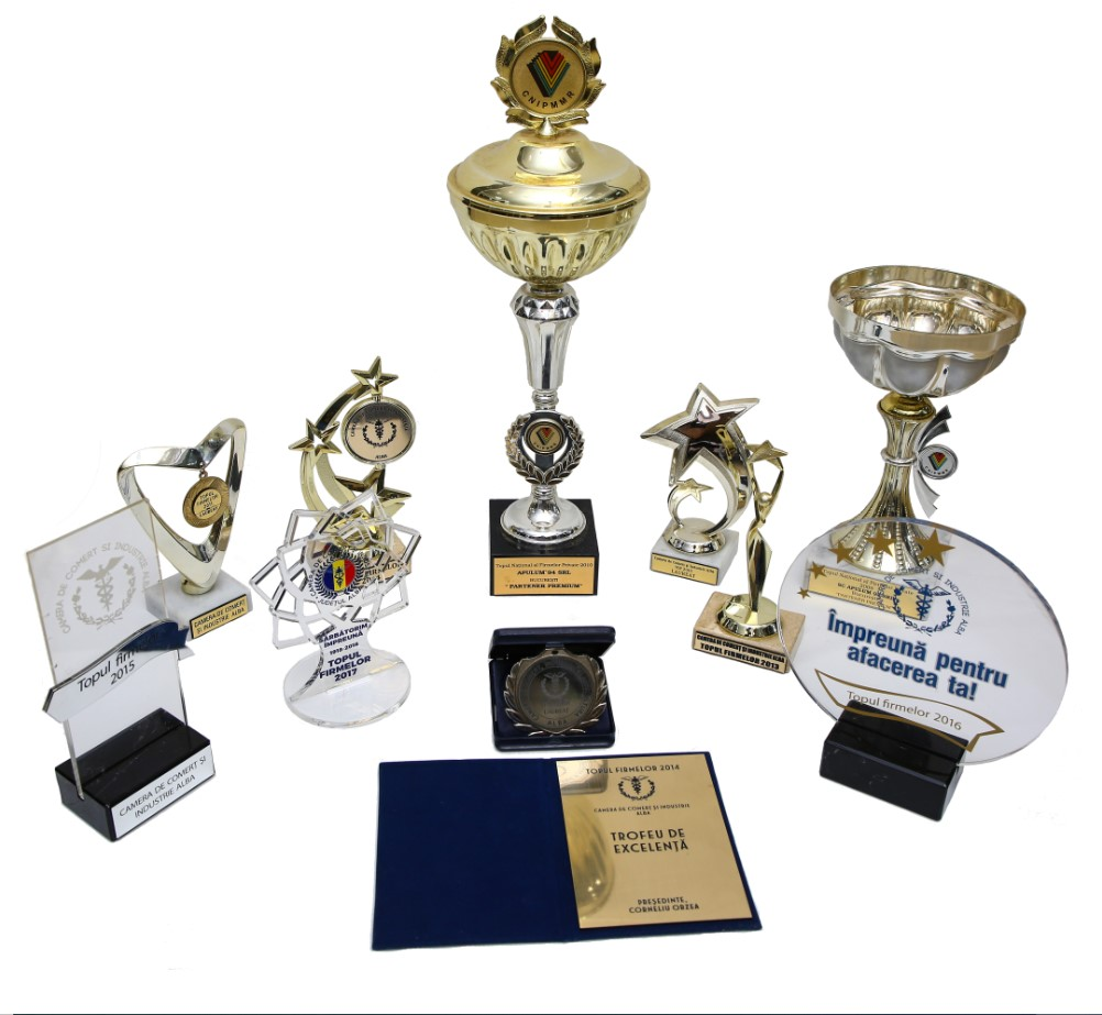 Premii de excelenta si trofee obtinute de Apulum94